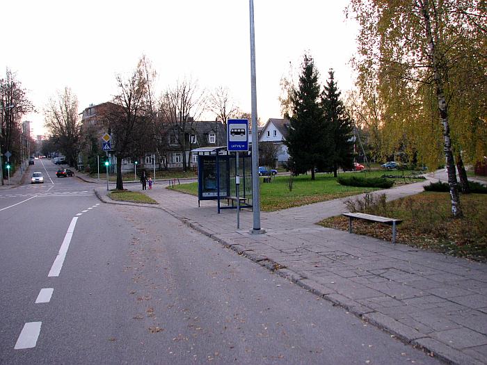 20101110-siuksliadezes-vytauto-saltoniskiu-06.jpg