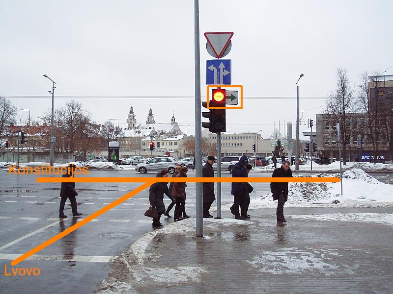 20110204-rodykles-pasalinimas-konstitucijos-lvovo-02.jpg