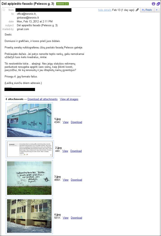 20120214-apipiestas-fasadas-pelesos-01.jpg