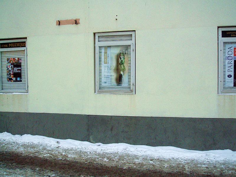 20120219-stendas-prie-baltu-drambliu-01.jpg