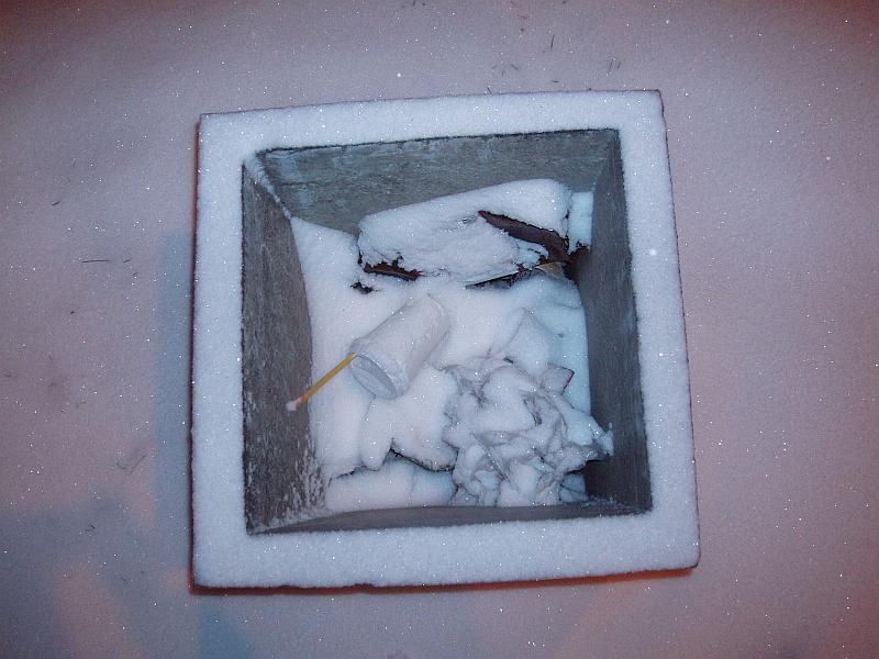 20120220-siuksliadezes-naudojimas-120226-013.jpg
