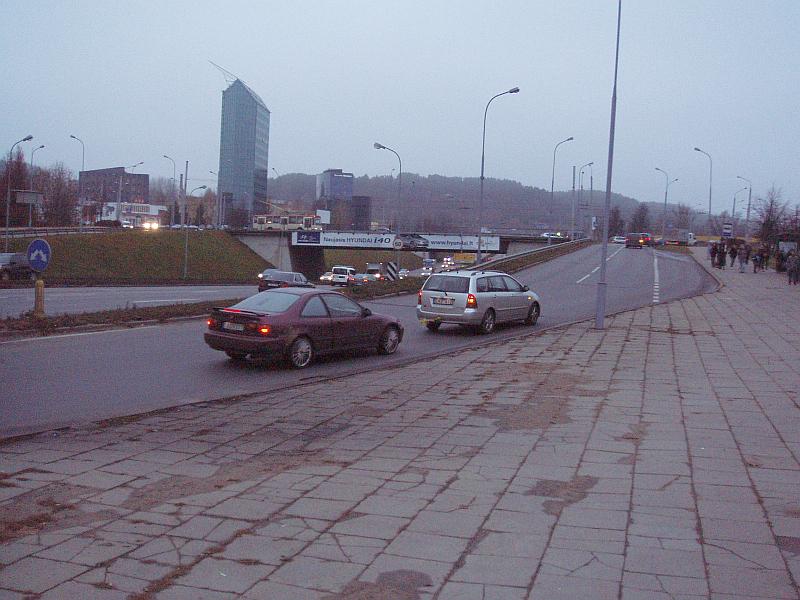 20120221-kamstis-gelezinio-vilko-03.jpg