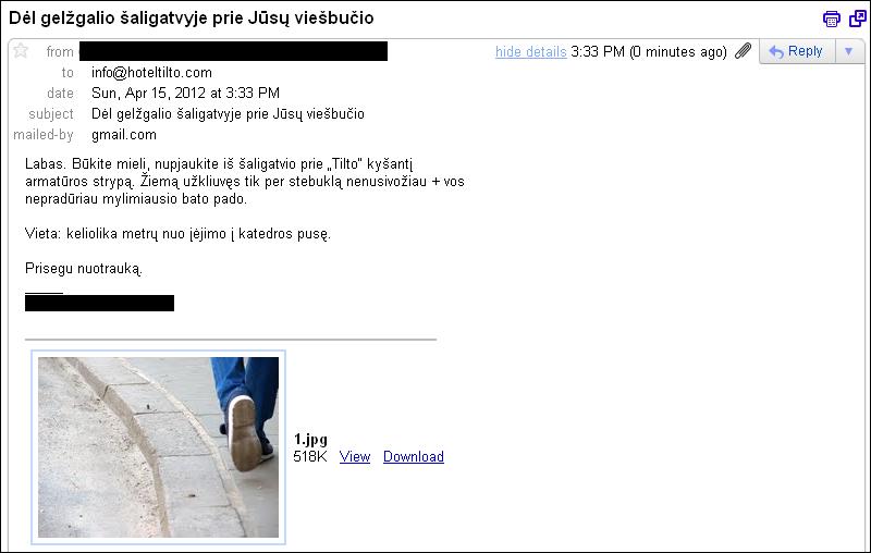 20120415-gelzgalis-saligatvyje-tilto-01.jpg