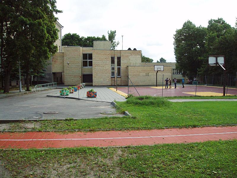 20130329-geliu-klombos-prie-antakalnio-gimnazijos-01.jpg