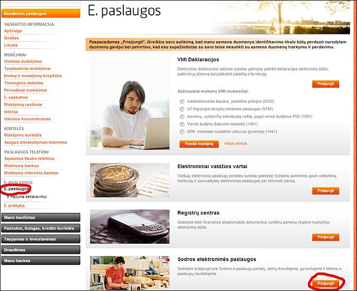 20130404-individualios-veiklos-mokesciai-vsd-ir-psd-01.jpg
