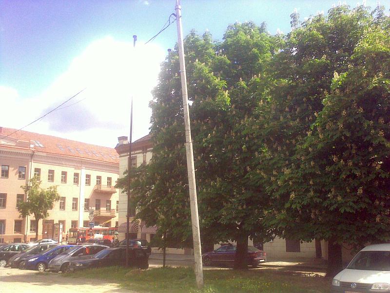 20130515-vilnius-be-veliavu-31.jpg