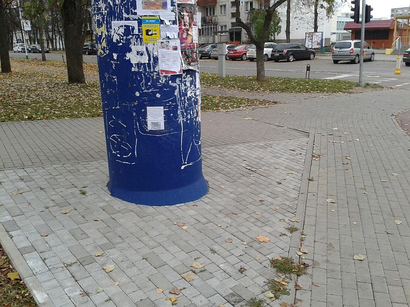 20140923-pavojingi-bortai-ziedineje-sankryzoje-elektrenuose-31.jpg